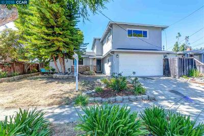 Hayward Single Family Home For Sale: 238 Fairway St