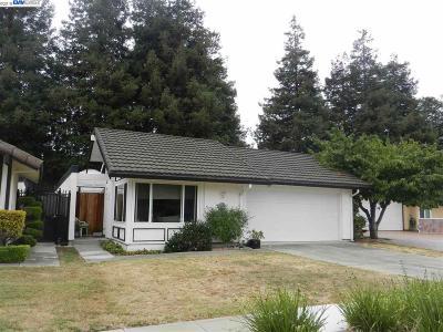 Newark Single Family Home For Sale: 36627 Port Anchorwood Pl