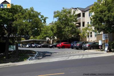 Hayward Condo/Townhouse Pending Show For Backups: 673 Royston Ln #135