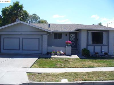 Pleasanton Single Family Home Pending Show For Backups: 4290 Dorman Rd