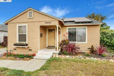 Newark Single Family Home For Sale: 36656 Magnolia St
