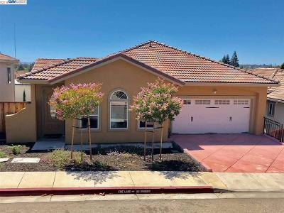Hayward Single Family Home For Sale: 22789 Rose Vine Ct