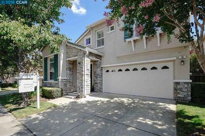 San Ramon Single Family Home For Sale: 20 Terraced Hills Circle