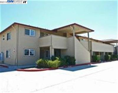 Livermore Rental For Rent: 2255 Chestnut St #7