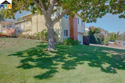 Pleasanton Single Family Home For Sale: 3920 Vineyard Ave.