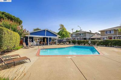 Pleasanton Rental For Rent: 8055 Mountain View Drive #h