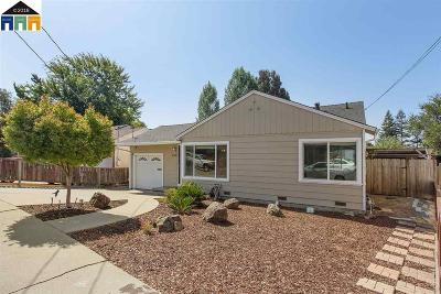 Castro Valley Single Family Home For Sale: 5043 Ray Ave