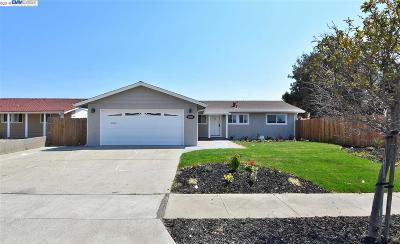 Newark Single Family Home For Sale: 5862 Oleander Drive