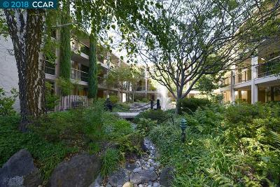 Walnut Creek Condo/Townhouse For Sale: 1129 Avenida Sevilla #2C