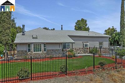 Stockton Single Family Home For Sale: 1907 E Eight Mile Rd