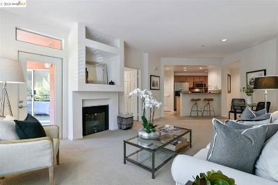Oakland Condo/Townhouse Price Change: 300 Caldecott Lane #205