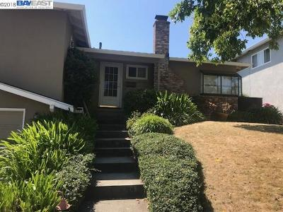 Castro Valley Rental For Rent: 18036 Lamson Rd