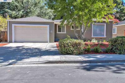 Pleasanton Single Family Home For Sale: 528 Kottinger Dr