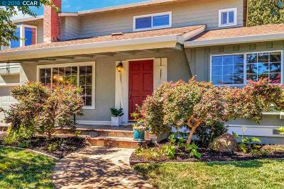 Walnut Creek Single Family Home For Sale: 21 Supreme Ct