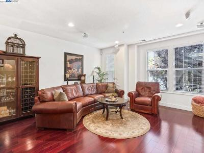 Dublin Condo/Townhouse New: 3635 Whitworth Dr