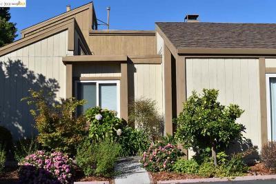 Alameda Condo/Townhouse For Sale: 1155 Bismarck Ln