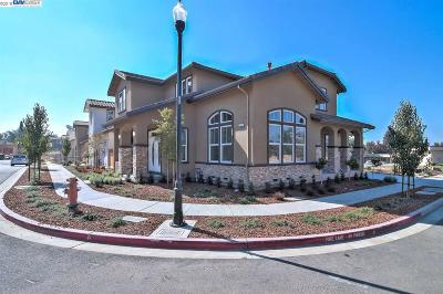 Fremont Single Family Home For Sale: 1622 Mento Terrace