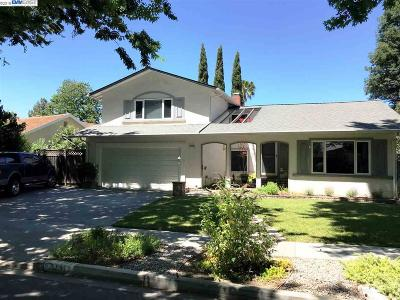 Pleasanton Single Family Home Active-Short Sale: 1312 Greenwood Rd