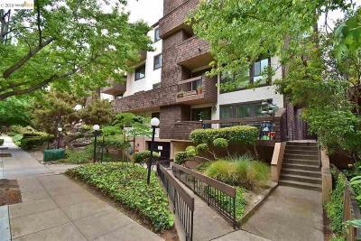 Oakland Rental New: 325 Vernon St