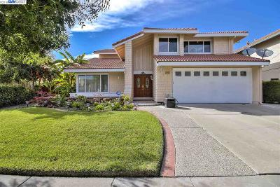 Fremont Single Family Home For Sale: 4275 Peregrine Way