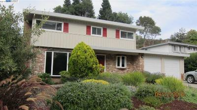 Castro Valley Single Family Home For Sale: 16977 Grovenor Drive