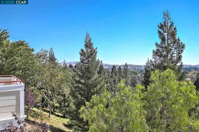 Alamo, Danville, San Ramon Condo/Townhouse For Sale: 421 Skyline Dr
