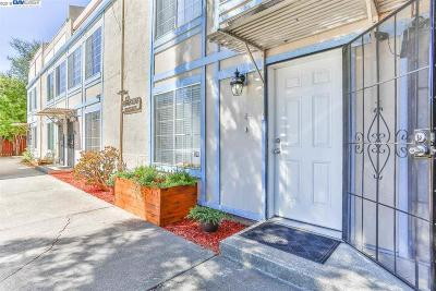 Hayward Condo/Townhouse New: 1389 C St #4