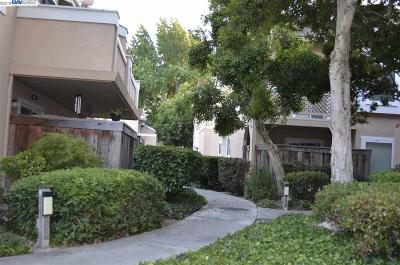 Fremont Condo/Townhouse New: 4630 Devonshire Common