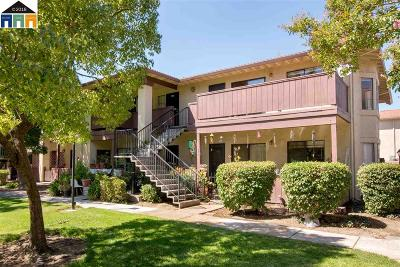 San Jose Condo/Townhouse New: 291 Kenbrook Cir