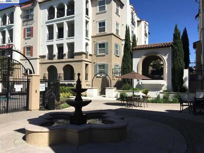 Dublin Condo/Townhouse New: 3245 Dublin Blvd #410
