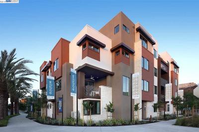 Dublin CA Condo/Townhouse New: $905,990