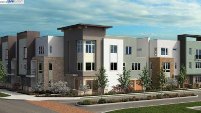 Dublin Condo/Townhouse New: 3438 Dublin Blvd