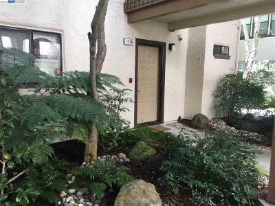 Walnut Creek Condo/Townhouse New: 1216 S Villa Way