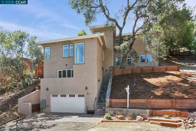 Oakland Single Family Home New: 1045 Grand View Drive