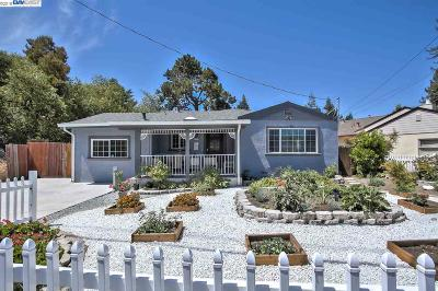 Castro Valley Single Family Home For Sale: 22251 N 4th St