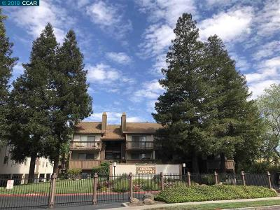 Concord Condo/Townhouse Back On Market: 2055 Sierra Rd #106