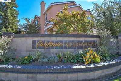 Danville Condo/Townhouse For Sale: 1011 Phoenix Street
