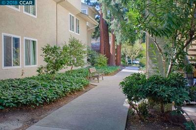 Walnut Creek Condo/Townhouse For Sale: 2704 Oak Rd #73