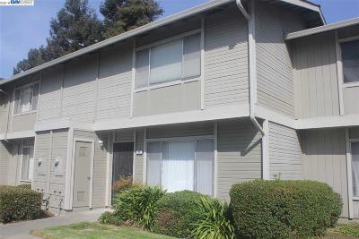 San Lorenzo Condo/Townhouse For Sale: 166 Loma Verde Dr