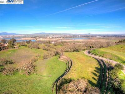 Pleasanton Residential Lots & Land For Sale: 6 Winding Oaks Dr
