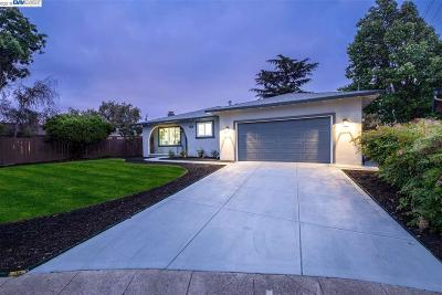 Dublin Single Family Home For Sale: 6863 Fir Ct