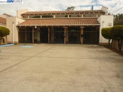 Hayward Commercial For Sale: 24000 Watkins St