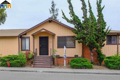 Castro Valley Single Family Home For Sale: 2747 Greenview