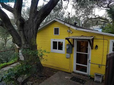 El Sobrante Single Family Home For Sale: 5920 Skyline