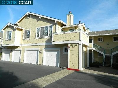 San Ramon Rental For Rent: 124 Skyline Dr