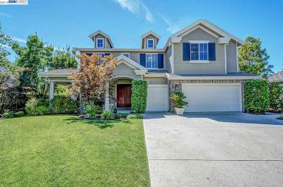 Pleasanton Single Family Home For Sale: 387 Mullin Ct