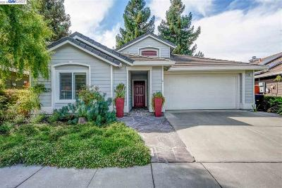 Pleasanton Single Family Home For Sale: 222 Trenton Cir