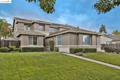 Oakley Single Family Home Pending Show For Backups: 1073 Vineyard Dr