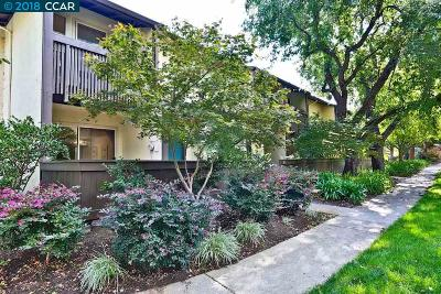 Walnut Creek Condo/Townhouse For Sale: 1874 Pomar Way