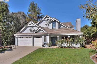 Pleasanton Single Family Home For Sale: 5099 Monaco Drive